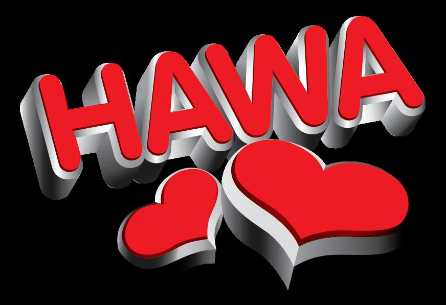 HawaOnline