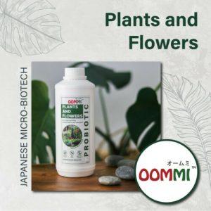OOMMI Probiotics Plants & Flowers - 1L